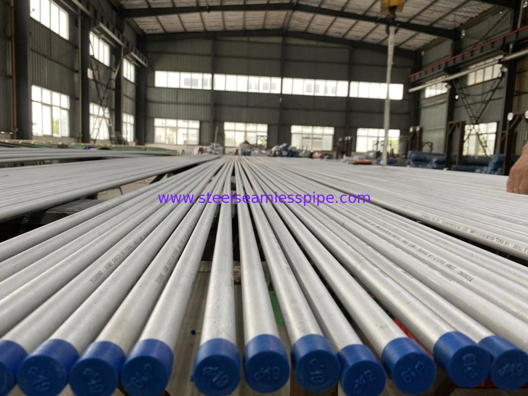 SA 213 TP316L Seamless Stainless Steel Tube Polished 19.05mm*1.65mm*7316mm